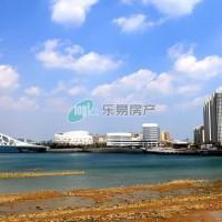 珊瑚贝桥成青岛地标性建筑 国内桥梁界独树一帜