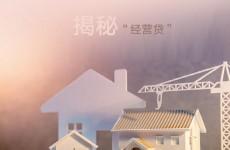 """揭秘房产市场神秘的""""经营贷"""",原来买房还可以这么做"""